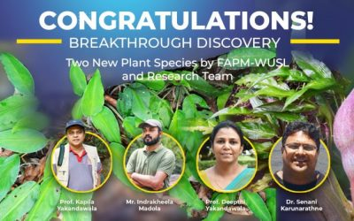 Congratulations! Breakthrough Discovery of Two New Plant Species by FAPM-WUSL and Research Team